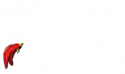 How quixotic persistence an idealism are. And how delicious!